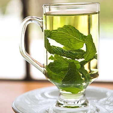 hot water with mint